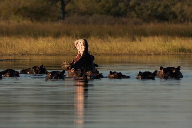 Botswana 27