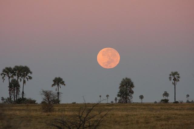 Botswana 35