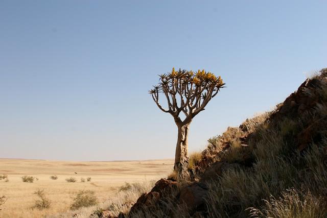 Namibia 14