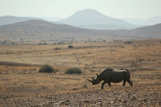 Namibia 4