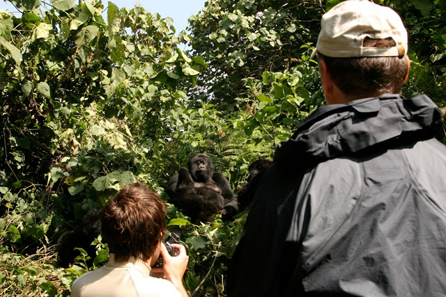 Rwanda (6)