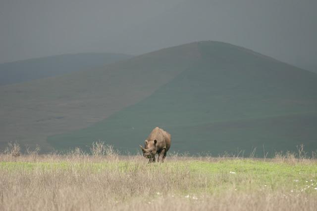 Tanzania 26