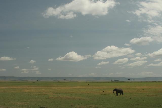 Tanzania 34