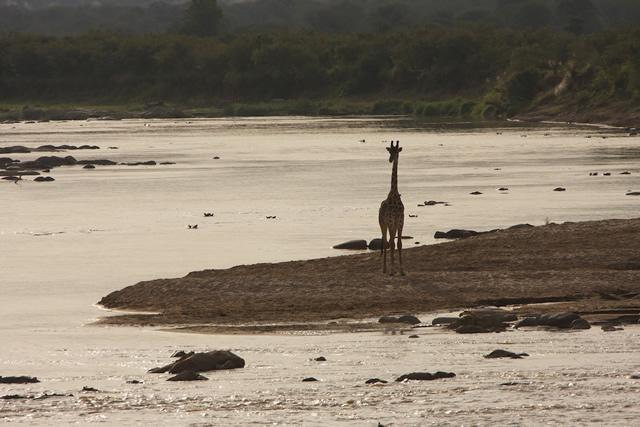 Tanzania 43