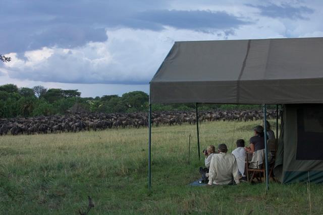 Tanzania 66