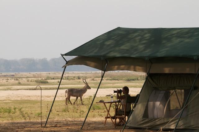 Zimbabwe (60)
