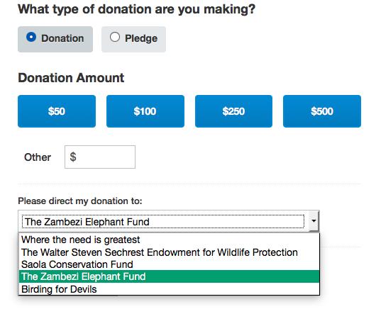 Tashinga Initiative donation