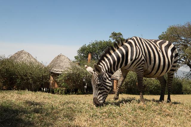 Ngorongoro Crater Lodge front